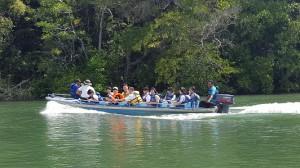 マングローブ舟2